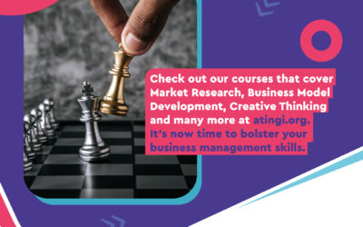 Promoting Digital Literacy through the Digital Ambassadors Program and the e-learning platform atingi